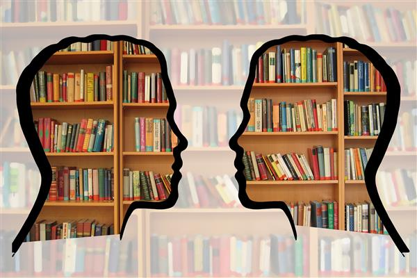 Silhouette with Library Books
